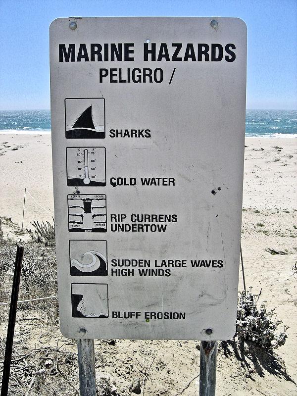 Marine Hazards Await at Scott\'s Creek Beach